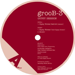 grooB-3/Gypsy Session 2005